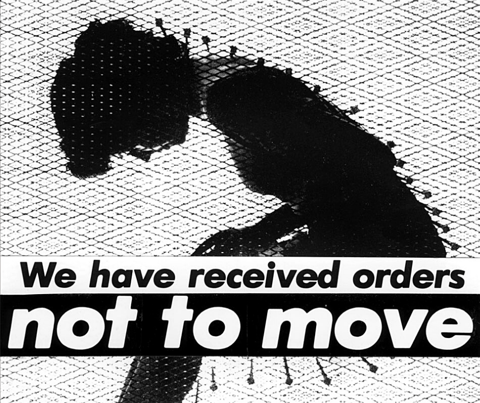 Barbara Krueger | We have received orders not to move
